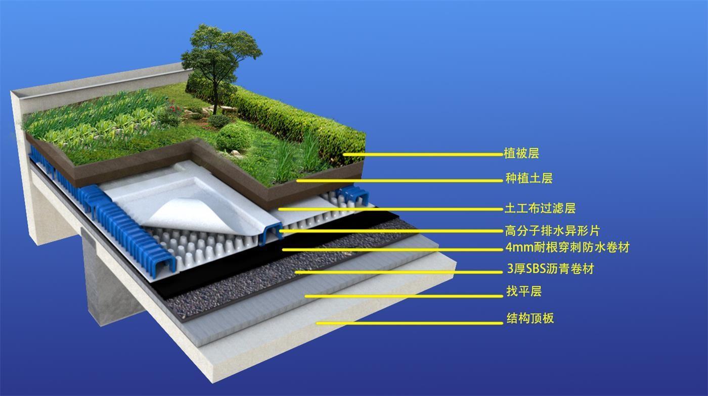 排水水封图.jpg